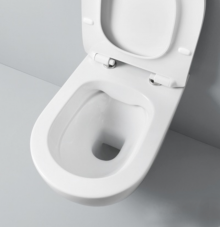 Wll Hung Rimless Toilet File 2.0
