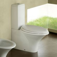 Close Coupled Toilet Sculture 72