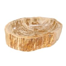 Fossil Petrified Wood Sink